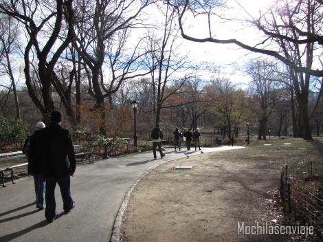 Central Park sin nieve