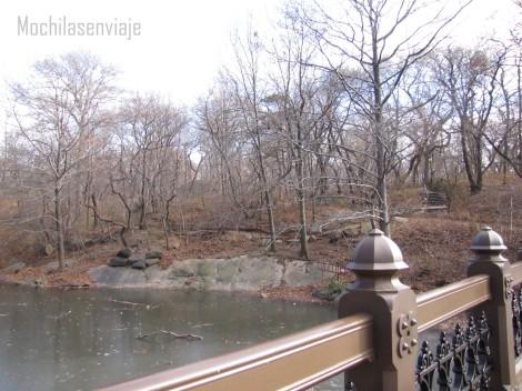 Nótese la rama sobre el río