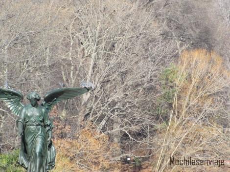 Paisajes del Central Park