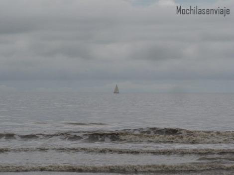 Avistaje de veleros desde la orilla.