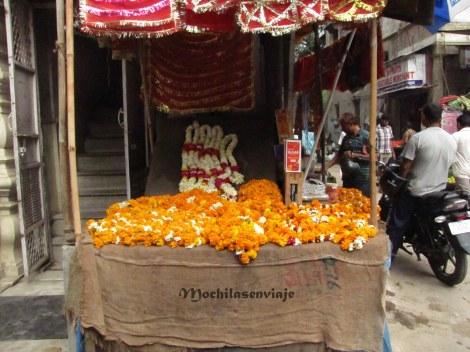 Puesto callejero donde venden flores de calendura para ser usadas como ofrendas.