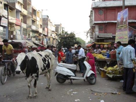 Las calles de Delhi tiene miles de año de historia por contar