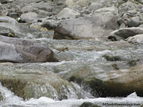 El río en Jingchan