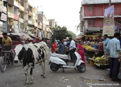 Escena típica de Nueva Delhi