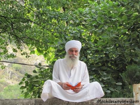 Meditando bajo un árbol