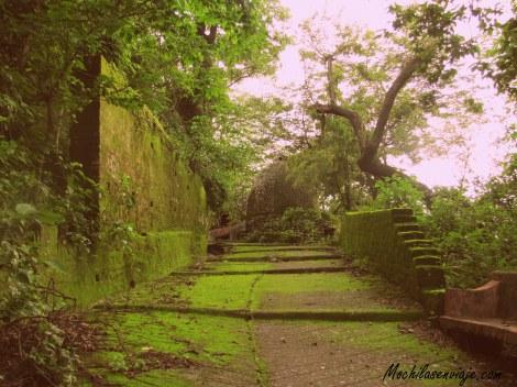 Camino a ashram