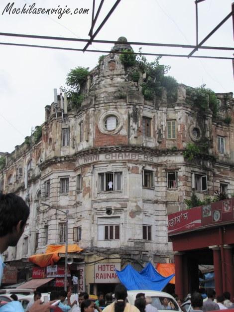 Esquina de Calcuta llena de plantas.