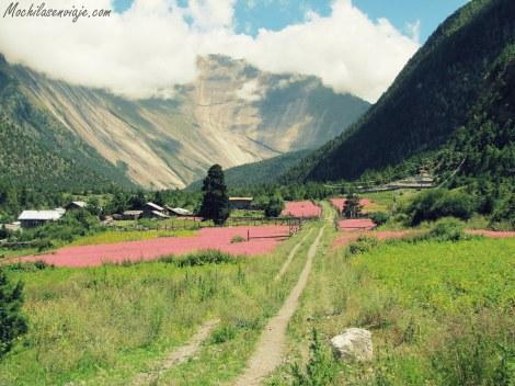Una de los paisajes más lindos que vimos.