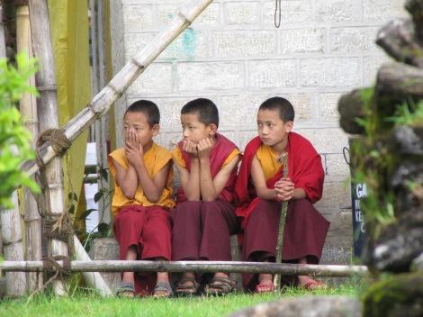 Niños budistas mirando atentamente