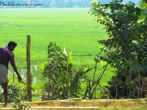 Kerala - India