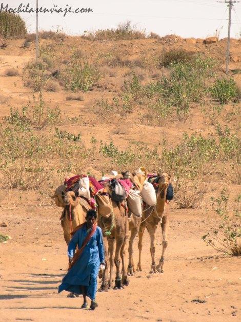 Jaisalmer -2