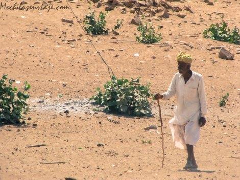Jaisalmer -3